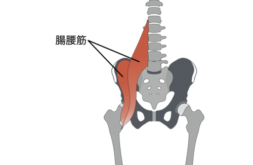 腰痛の治し方や有効なストレッチ 腸腰筋のストレッチ