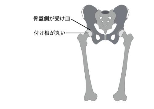 腰痛になった場合の解決策 股関節の前側のストレッチをする