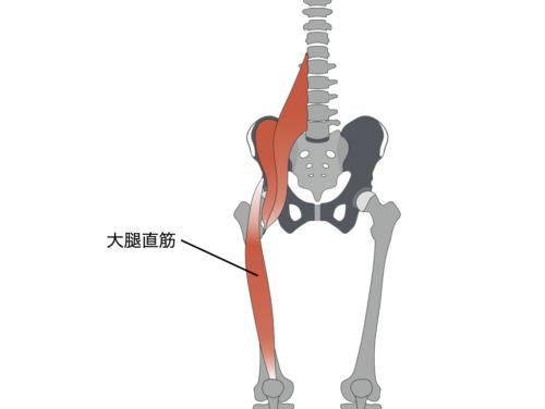 腰痛の治し方や有効なストレッチ 大腿直筋のストレッチ